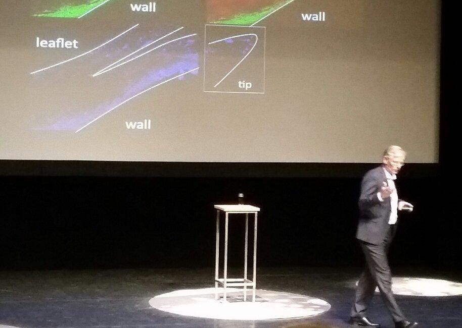 Baaijens tijdens zijn presentatie in het Parktheater