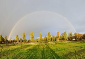 regenboog akker brabant zeelberg gras