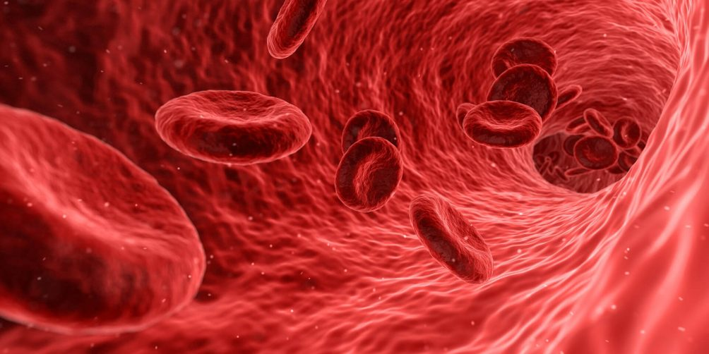 Bluttest