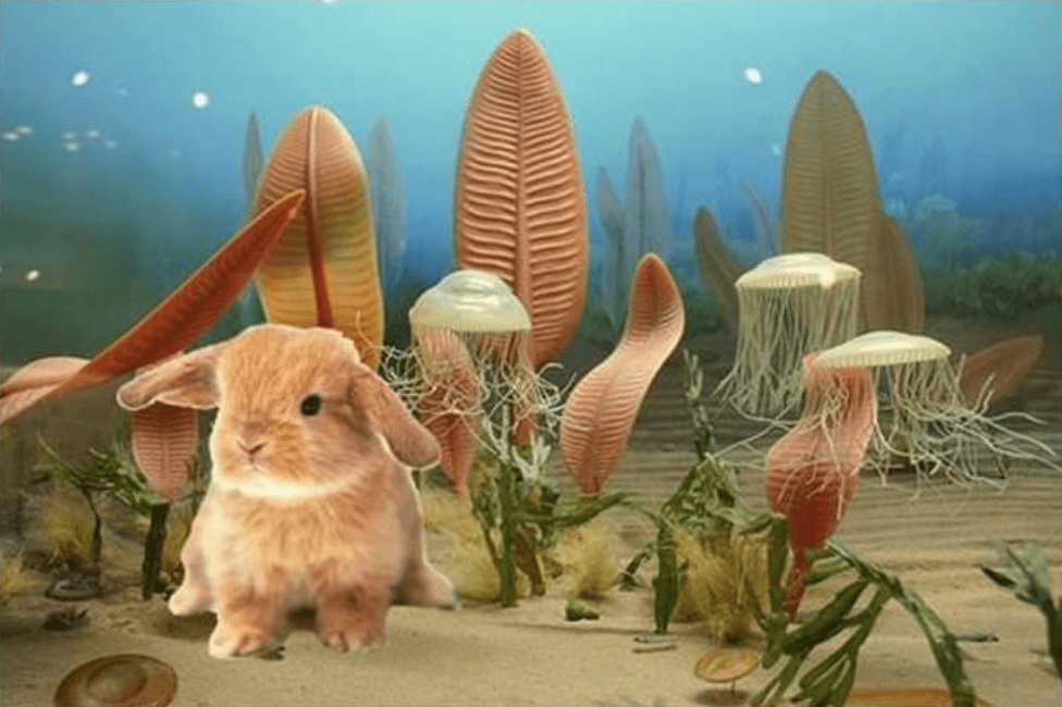 fossil rabbit from the precambrium
