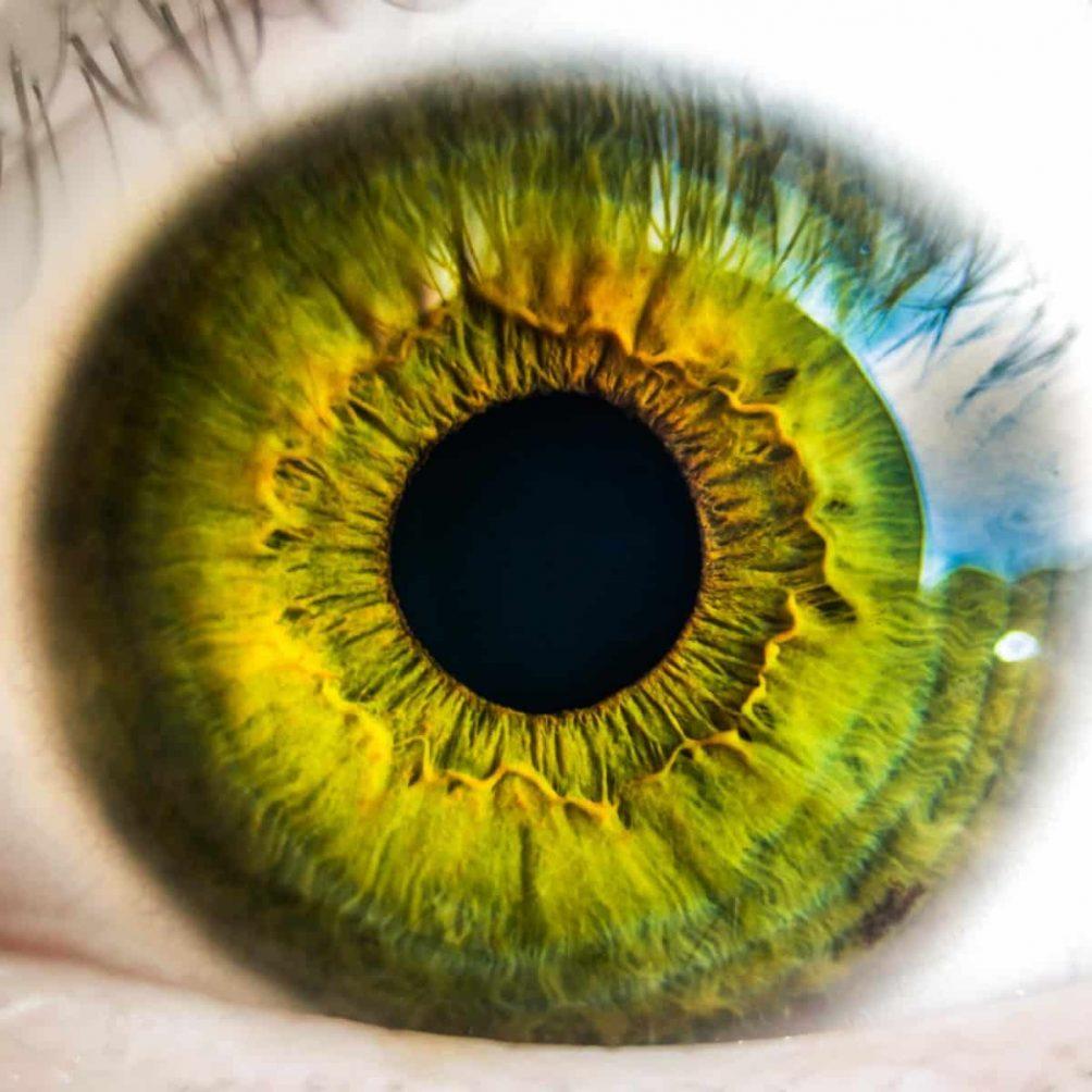 Augen planen perfekt