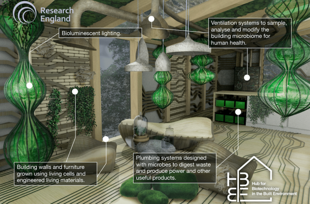 Experimenteel biologisch huis 'Living Buildings'