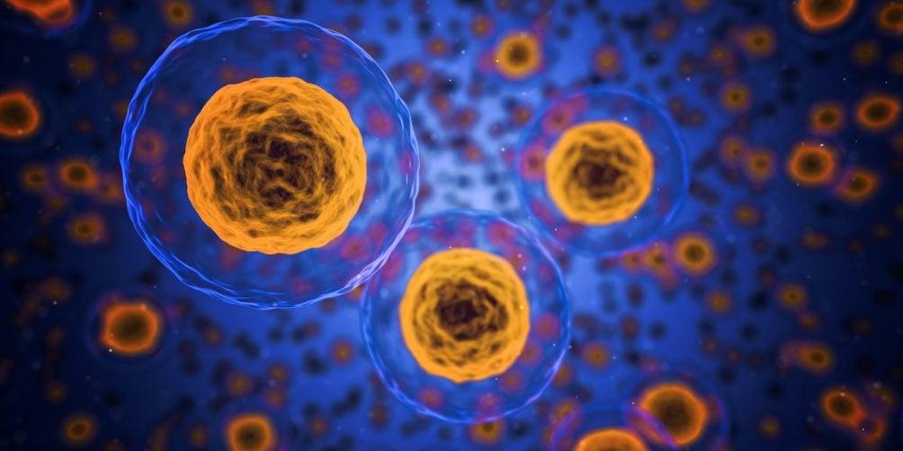 Produktionsprozesse, biochemische, Zelle