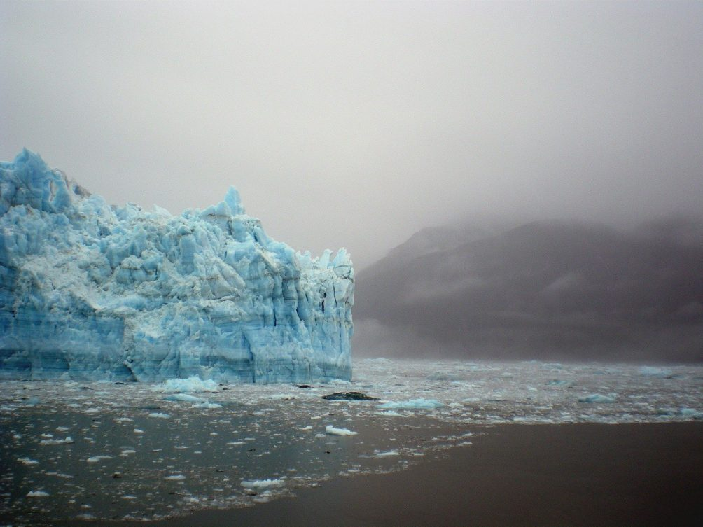 Greenland lost a record 532 bn tonnes of ice last year