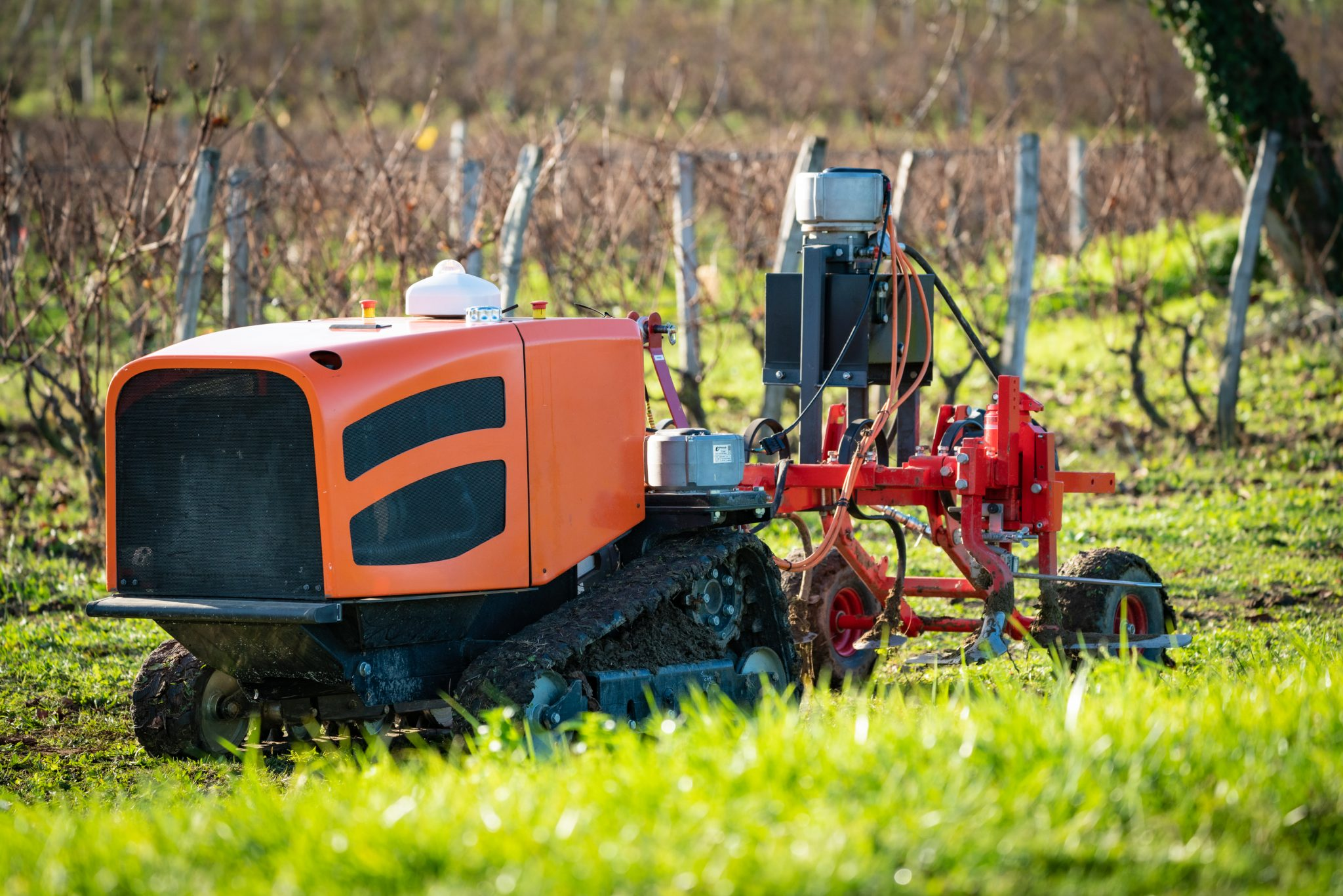 Killing weeds in a sustainable way using a autonomous robot with laser vision (ENG)